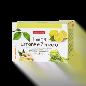Dr.Theiss Naturplus Tisana Limone e Zenzero 20 Filtri