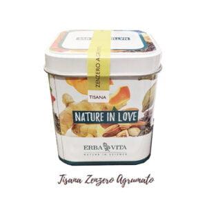 Erba Vita Nature in Love Tisana Zenzero Agrumato 100gr